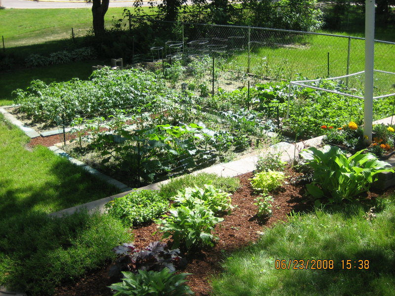 as i walk around my neighborhood i am seeing the emergence of many new gardens in the very front of many homes small raised or enclosed beds - The Victory Garden
